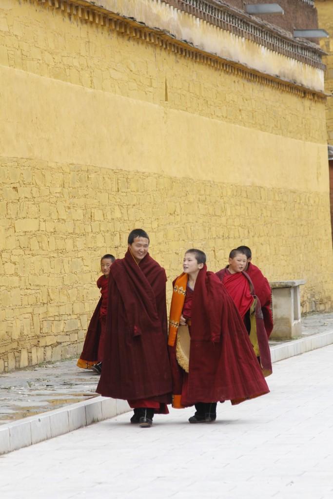 Monks Training